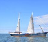 Wapen fan Fryslan zeilend over IJsselmeer