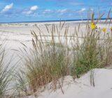 Strand aan de Noordzee