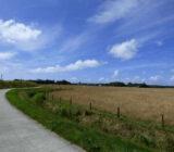 Platteland op Texel