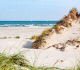 Terschelling duinen