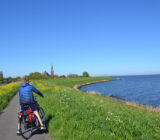 Friesland en Terschelling Fiester